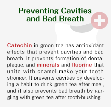 Preventing Cavities and Bad Breath - Catechin in japanese green tea has antioxidant effects that prevent cavities and bad breath. It prevents formation of dental plaque, and minerals and fluorine that unite with enamel make your teeth stronger. It prevents cavities by developing a habit to drink japanese green tea after meal, and it also prevents bad breath by gargling with japanese green tea after tooth-brushing.