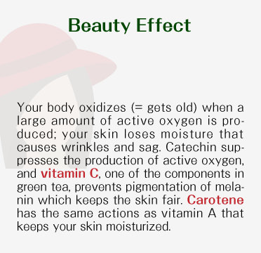 Beauty Effect - Your body oxidizes (= gets old) when a large amount of active oxygen is produced; your skin loses moisture that causes wrinkles and sag. Catechin suppresses the production of active oxygen, and vitamin C, one of the components in japanese green tea, prevents pigmentation of melanin which keeps the skin fair. Carotene has the same actions as vitamin A that keeps your skin moisturized.