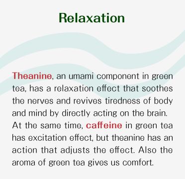 Relaxation - Theanine, an umami component in japanese green tea, has a relaxation effect that soothes the nerves and revives tiredness of body and mind by directly acting on the brain. At the same time, caffeine in japanese green tea has excitation effect, but theanine has an action that adjusts the effect. Also the aroma of japanese green tea gives us comfort.